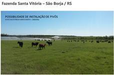 FAZENDA 465 HA EM SÃO BORJA/RS  (SOJA E GADO)