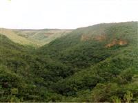 Reserva Ambiental