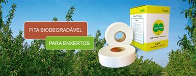FITA BIODEGRADÁVEL PARA ENXERTIA DE MUDAS - BUDDY TAPE