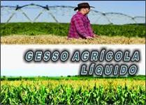 GESSO AGRICOLA LIQUIDO