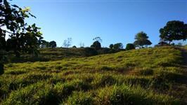 Fazenda 35 alq (167 ha), Araguaína-TO, ótimo acesso.