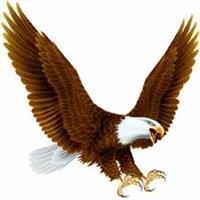 ÁGUIA NEGRA / BLACK EAGLE