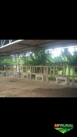 Fazenda Vale 148 Alq em Formoso Go