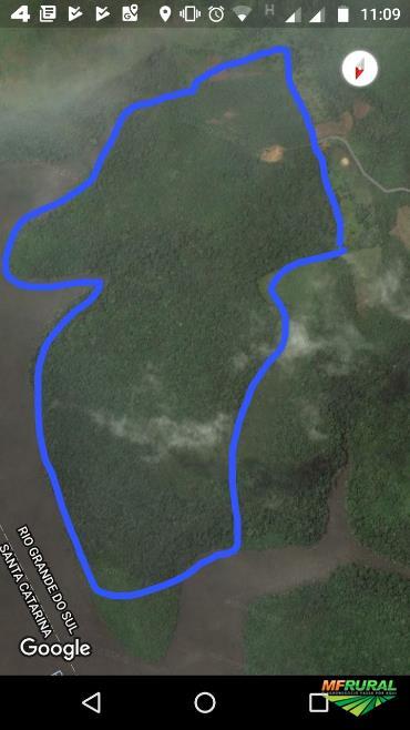 Área de terra em Vacaria