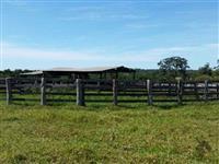 Excelente fazenda para pecuária
