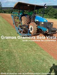 Grama Esmeralda - Grameira Bela Vista