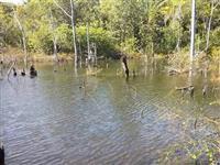 Pago comissão /Fazenda na Beira do rio Tocantins / Pago comissão