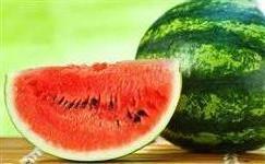 Melhor melancia Bahia
