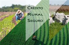 Credito Rural - Melhores Taxas e Prazos
