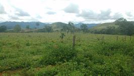 Fazenda Acabavidinha, 70 Alqueires