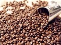 Café Torrado e Moído ou Torrado Grãos