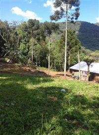 Sítio São Franscisco de Paula-RS(José Velho) 12 hectare.