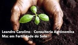 Consultor Agrícola