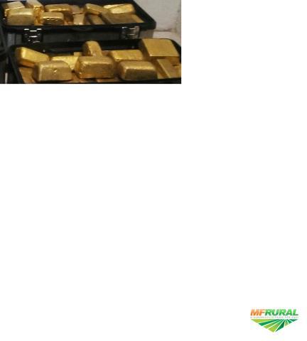 Vendo Ouro Hallmark 99.99% de puridade e 24 carat