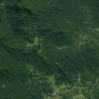 Vendo Áreas Rurais em Guaraqueçaba - Paraná