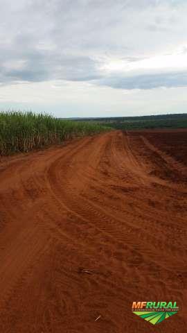 Fazenda de Cana em Nova Andradina Ms