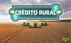 Capital de Giro e Crédito Rural