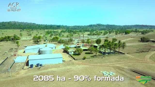 Fazenda com Confinamento à Venda em Juara MT