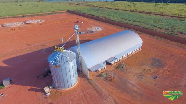 Fazenda Brasnorte Mato Grosso