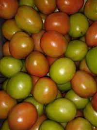 Venda de tomate