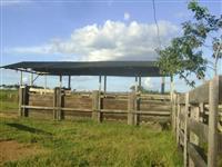 Fazenda, Pára, 8km Cidade. Frente Br Asfaltada. Ótimo Local
