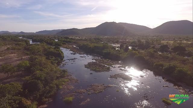 Iaçu Bahia fonte: imagens.mfrural.com.br
