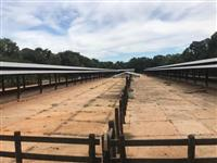 Confinamento para 2000 cabeças de gado com 2000 toneladas de silagem de milho disponivel em Avaré sp