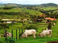 Crédito rural e urbano sem juros para pessoa física e jurídica