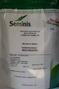 Vendo melancia (red heaven) começando a produzir