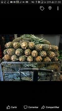Abacaxi para exportação