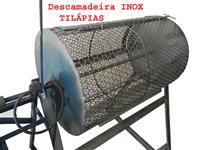 Descamadeira Inox Tilápia Pacú 40kg Com Motor E Reduto