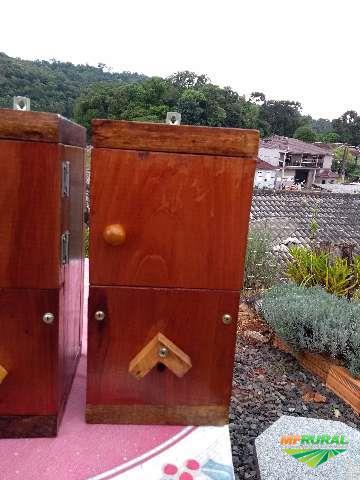Caixas para abelhas da especie Mirim