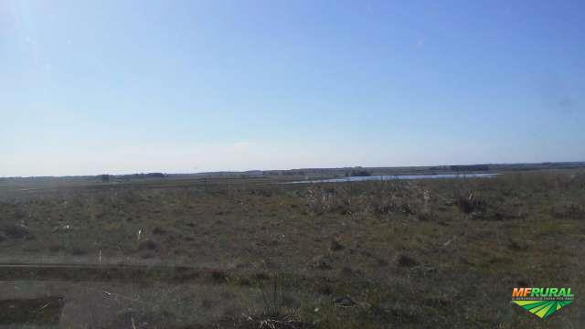 Área  produtiva com fontes de agua,com 20 mil equitares de terra