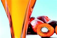 Óleo ácido do dendê para as indústrias