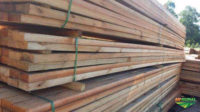vigamentos de eucalipto e tabuas de pinus