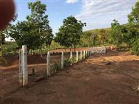 Fazenda em Paranã-TO