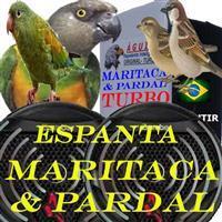 REPELENTE ESPANTA MARITACA PARDAL ANDORINHA POMBO