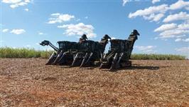 Frente agricola de corte mecanizado de cana de açucar