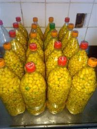 Pimenta Cumari do Pará Amarela Grauda.