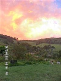 Arrendo, 19 hectares em Camanducaia - MG, na estrada entre Joanópolis e Monte verde