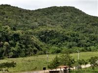 Compro área para compensação ambiental em SP