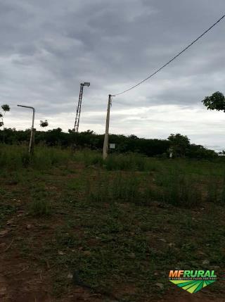 Sitio com Seringueiras
