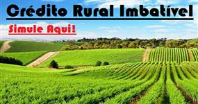 CRÉDITO RURAL / CAPITAL DE GIRO