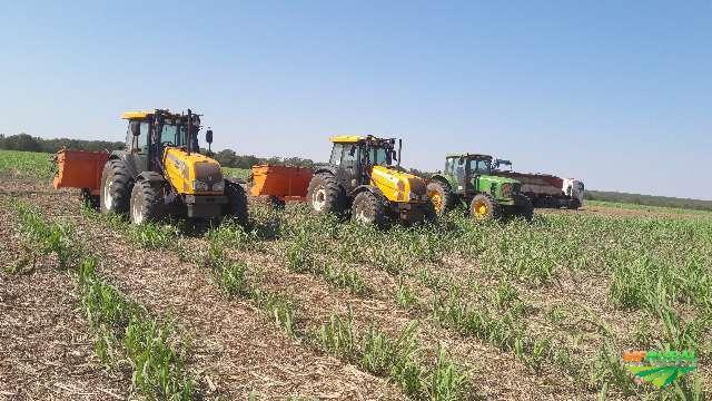 Prestação de serviços agrícola