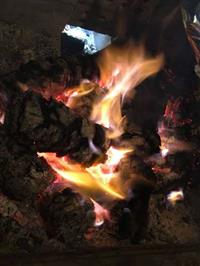 Briquetes para queima em geral