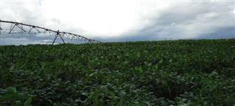 Fazenda á venda em Minas