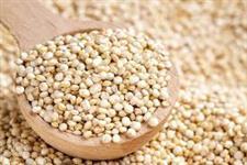 Quinoa em grãos a Granel sacaria 25kg