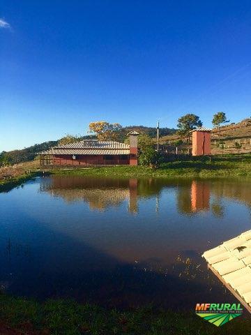 Maravilhosa Fazenda Morro do Pilar