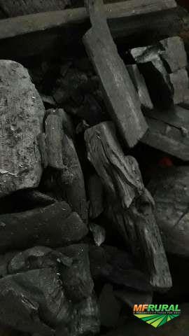 Carvão Vegetal de Acácia Negra