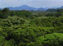 Áreas para compensação ambiental